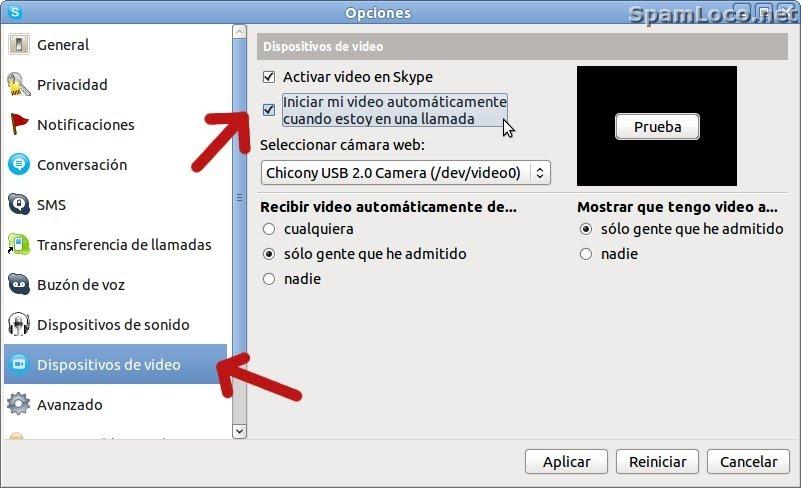 skype camara de seguridad