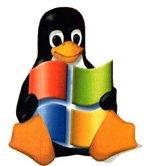 pinguino sosteniendo a windows una imagen de humor