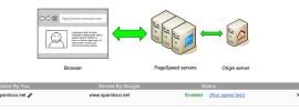 pagespeed service en spamloco